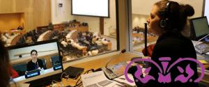 La importancia de una buena preparación en traductores e intérpretes institucionales