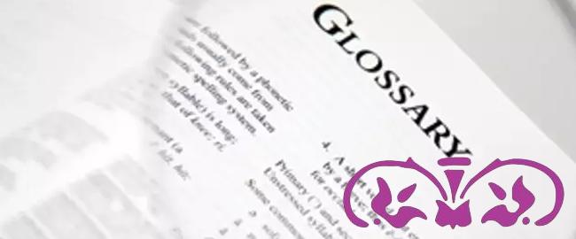 El uso del glosario en la traducción profesional